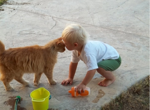 Cat with a child